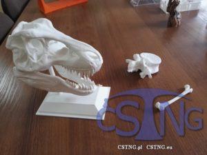 drukowanie-3D-Rzeszów-kości-biomedycyna